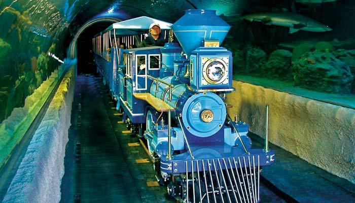CP Huntington Train – CHANCE RIDES
